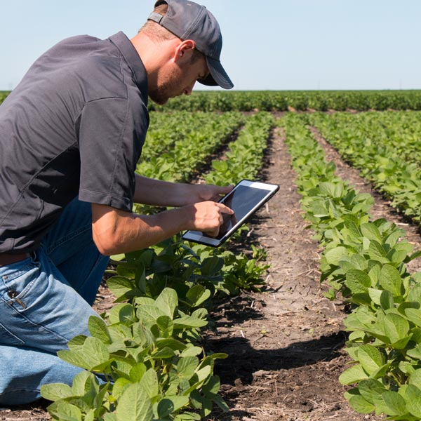 workers compensation in agriculture, First Benefits Insurance Mutual